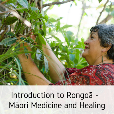 Introduction to Rongoā Maori Medicine and Healing (1)