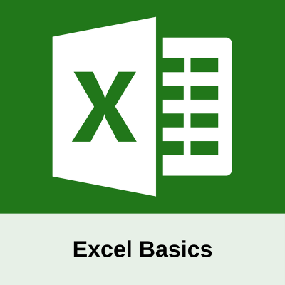 Excel Basics bold