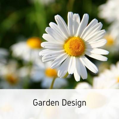 Copy of Garden Design