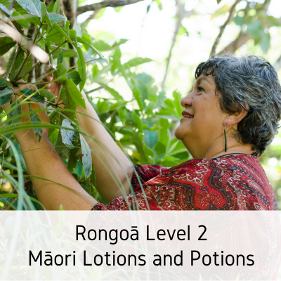 Level 2 Rongoā – Māori Lotions and Potions-2